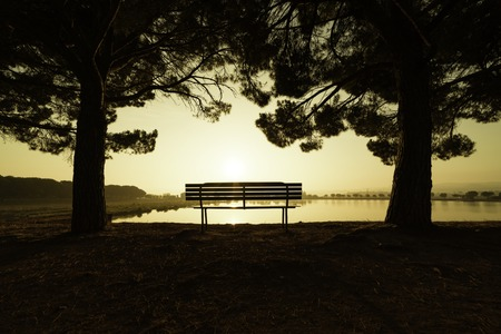 warmly: Summer landscape with the sun warmly illumining a bench under the trees in a park with a lake in Manresa, Spain