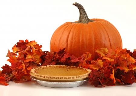 Festive Autumn Dessert Stock Photo - 5645013
