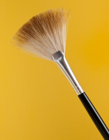 팬 블러시 브러쉬 (노란색)
