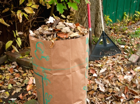 Fall foilage in Michigan getting bagged as yard waste Stock Photo