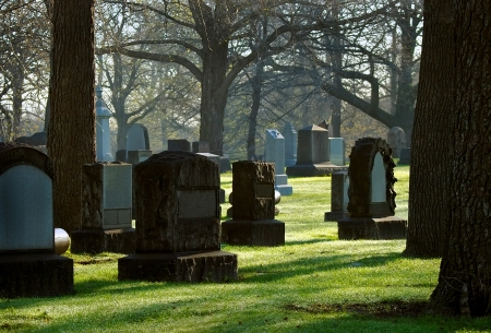 deceased: Early Morning Cemetary Stones