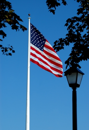 the u s  flag: U S  Flag in City Park