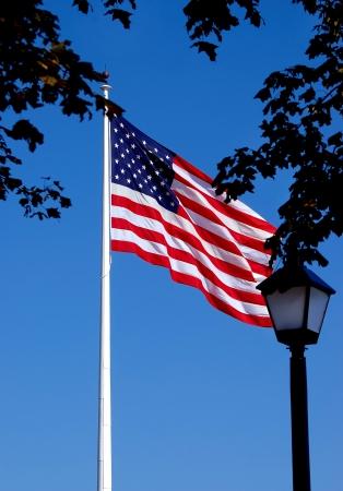 U S  Flag in City Park