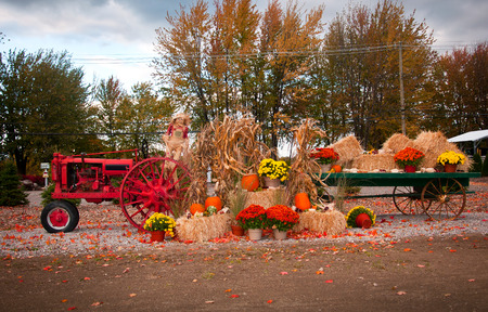 Old tractor as fall harvest decor in yard