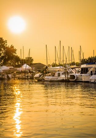 liesure: Golden glow on marina boats and water