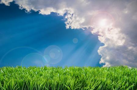 雲の背後にある芝生に光を発して太陽光線