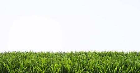 Groen gras gazon met zonnige en regenachtige dagen Stockfoto