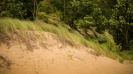 warren: Sand Hills at Warren Dunes Park Michigan Stock Photo