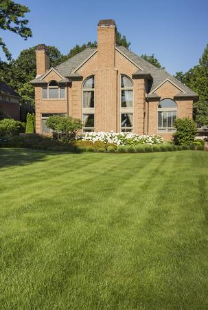 cut grass: Beautiful green full grass in home yard Stock Photo