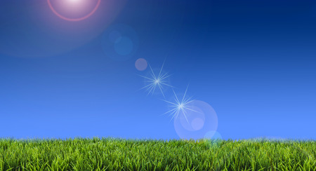 Flare for green grass lawn on sunny days Archivio Fotografico - 98127995