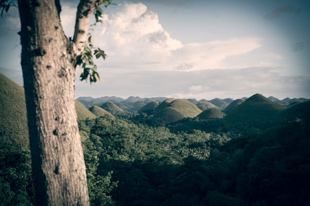 tranquilly: Bohols famous landmark the Chocolate hills are sitting mystically and tranquilly in the lush green jungle of the Philippines. Stock Photo
