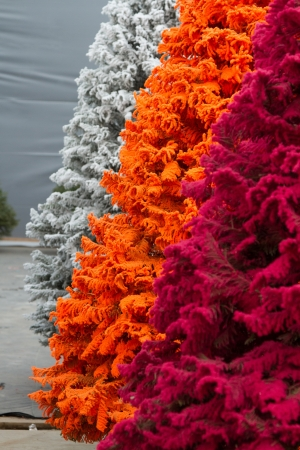 fake christmas tree: Shot of colored Christmas trees, flocked in different colors, closeup, portrait shot