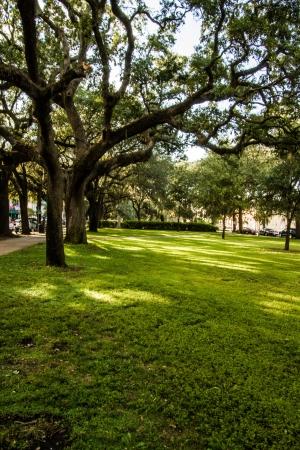 uninhabited: An uninhabited tree-lined park in downtown Savannah Stock Photo