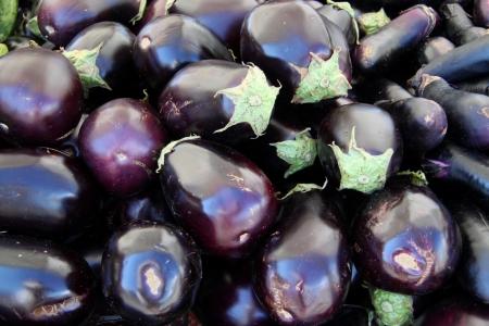black beauty japanese eggplant