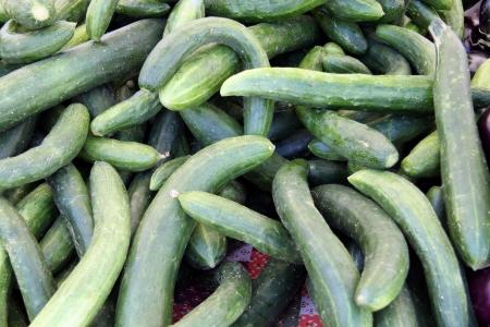 Organic long cucumbers