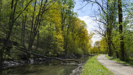 The gravel bicycle path runs through the forest beside the historic C&O Canal Towpath.