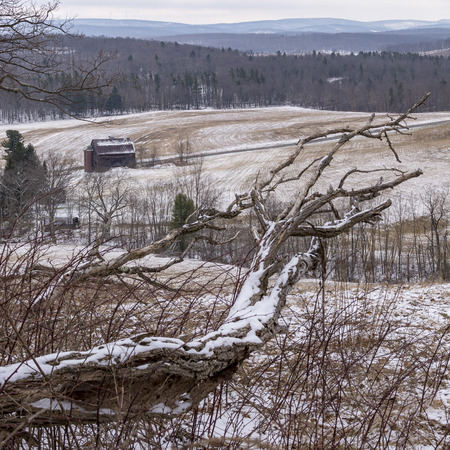 An old fallen tree sits on a hill above a barn and snow covered hills in the countryside of McHenry, Maryland, USA.
