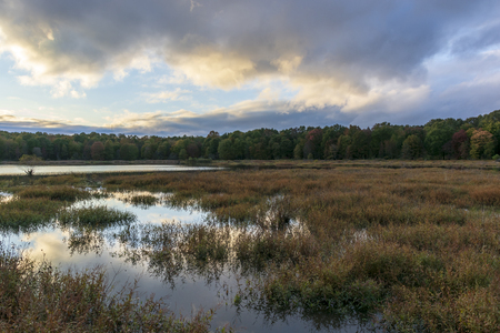 Puffy blue and yellow clouds are reflected in the mirror-like surface of a small Virginia marsh at dusk.