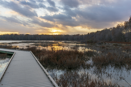 A wooden boardwalk winds through a barren marshland while a wonderful display of colors dances across the twilight sky.