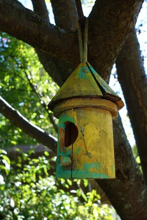 A brightly painted bamboo birdhouse in colors of green and yellow hangs from the branch of a leafy tree.