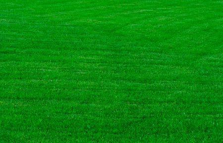 gras maaien: een groen gazon, achtergrond Stockfoto