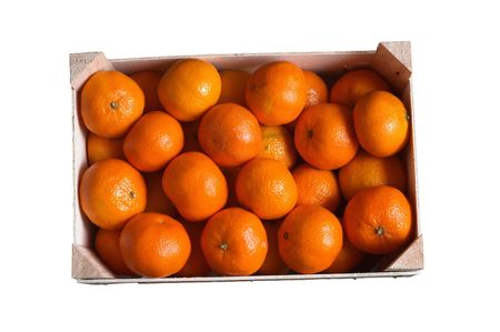 mandarins are in the box on white