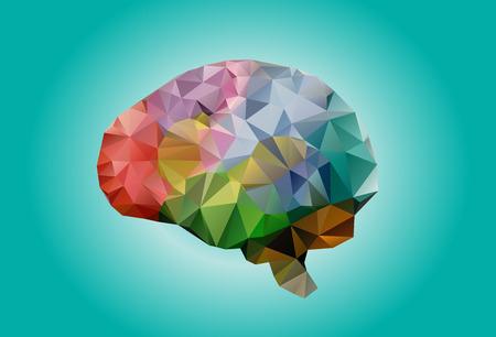 subjective: human brain geometric  triangles Stock Photo
