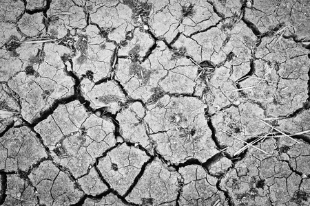 parched: cracked earth ,Soil parched, drought Stock Photo