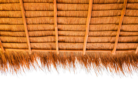 imperata: Under view of thatched roof (Roof from  Imperata cylindrica Beauv.)