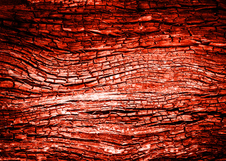 burn: red abstract wood charcoa fire burn texture