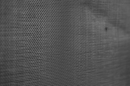 ammonium: Mosquito wire net screen texture on the window closeup