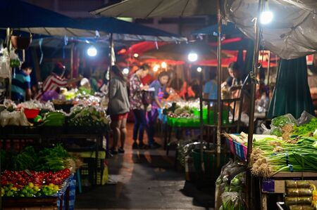 People buying fruit and vegetable in morning market for making breakfast or buying in bulk to resell at regional local in thailand.,between 2-8 oclock in the morning