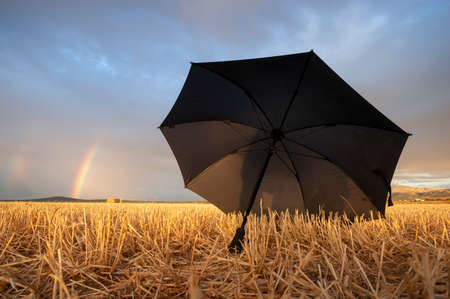 open black umbrella in a field of mown straw and with rainbows