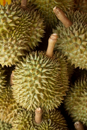 Durians photo