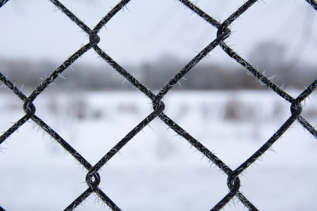 Lattice fence covered with snow, winter time, snow on a grid, it is a lot of snow on a grid, frost on the fence, iron lattice with ice against the background of snow, hoarfrost on the grid
