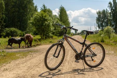 Bicycle Larsen Rapido