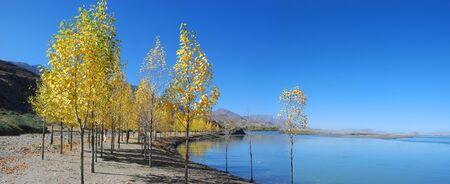 Panorama of beautiful autumn trees and lake in Tibet