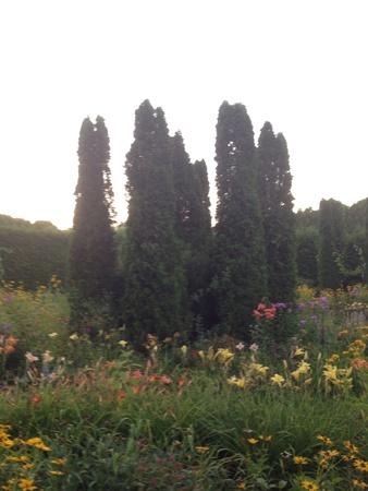 Cirkel tuin arrangement. Stockfoto