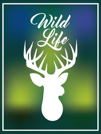 blurred background wild life deer Ilustracja