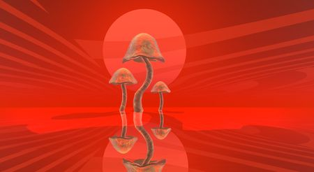 fantacy: majic mushrooms