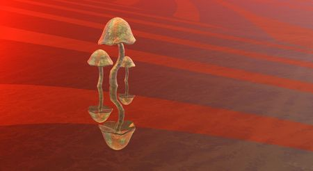 fantacy: majic mushroom Stock Photo