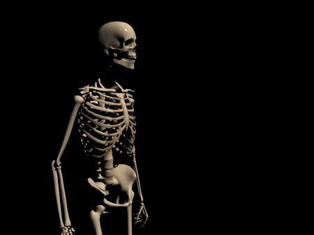 corporal: skeleton Stock Photo