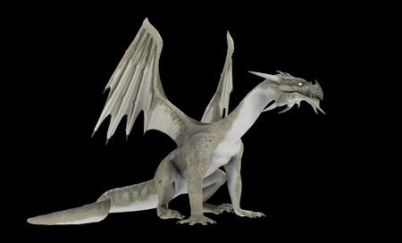 flying dragon: White dragon