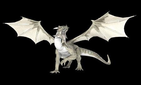 flying dragon: White dragon