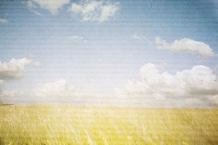 sunny landscape in a yellow wheat field, textured photograph photo