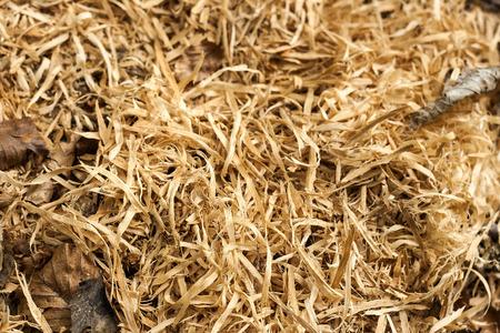 sawdust  Imagens