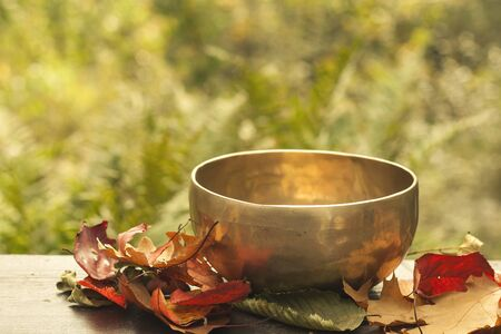 Tibetan bowl and autumnal leaves Stock Photo