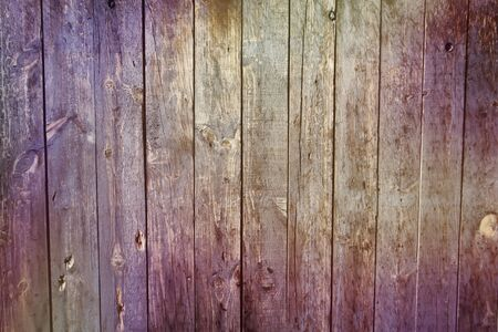 Old rustic purple painted wooden wall Imagens