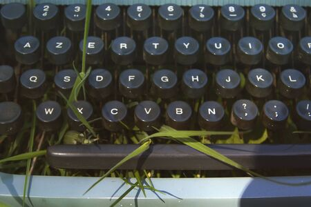 Detail of old blue typewriter on the green grass 免版税图像