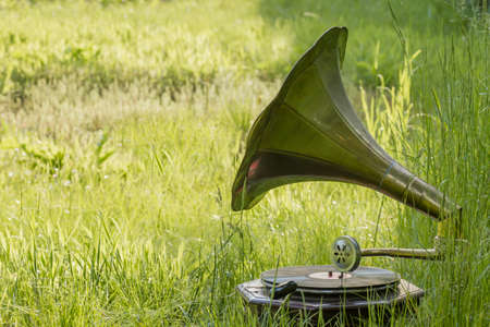 Vintage gramophone in the green garden grass